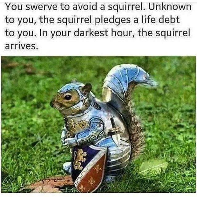 I knew all my good deeds towards animals would pay off in squirrels in medieval armor. Just knew it. . . . . #Podcast #WereSoCool #WakeMeUpWhenSeptemberEnds #WeDidntAskForThis #LifeAdventures #LiveYourBestLife #BeKindToOthers #BeKindToYourself #MakeTheAsk #AskForWhatYouWant #SafetyFirst #Meme #Memecast #wdaftPodcast #squirrel