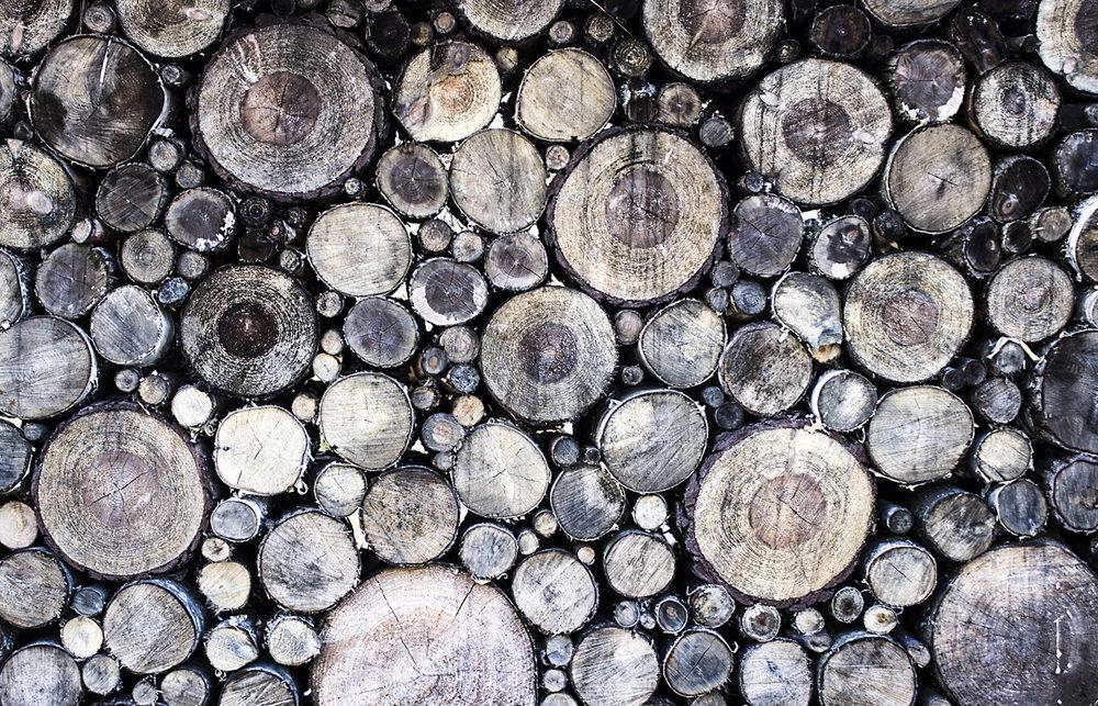 Licoln Logs.jpg