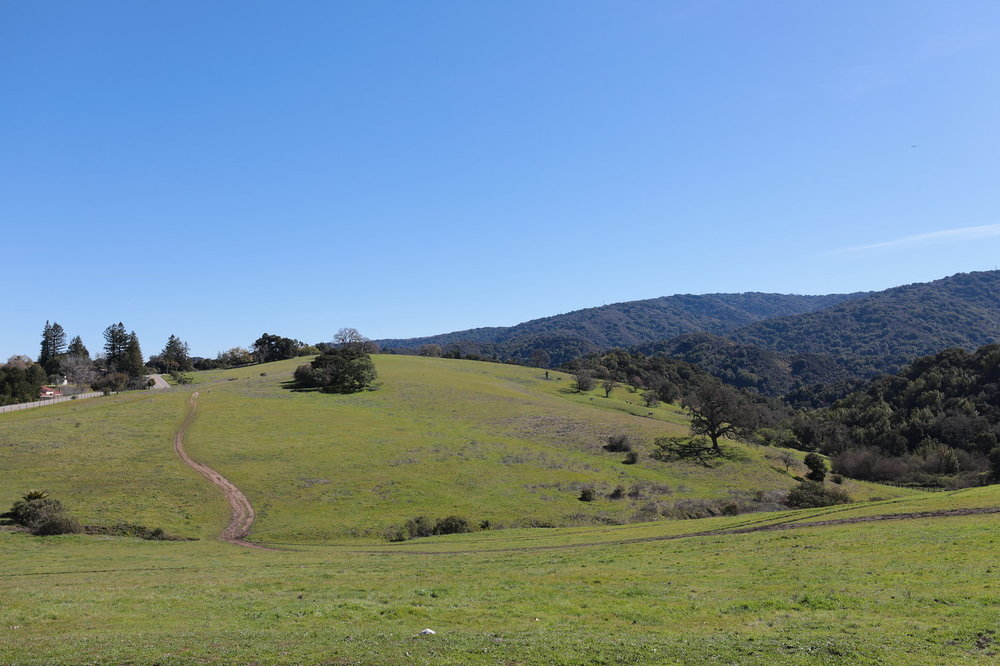 Los+Altos+Hills+Blu+Skye+Media+Photo.+2JPG-X3.jpg