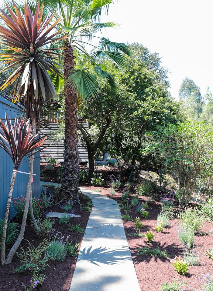 26776 Almaden Ct Los Altos Hills Blu Skye Media-4055-X2.jpg