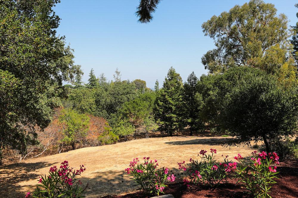 26776 Almaden Ct Los Altos Hills Blu Skye Media-4054-X2.jpg