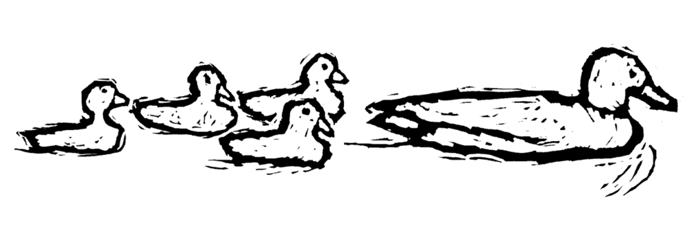 Momma_Ducklings.png