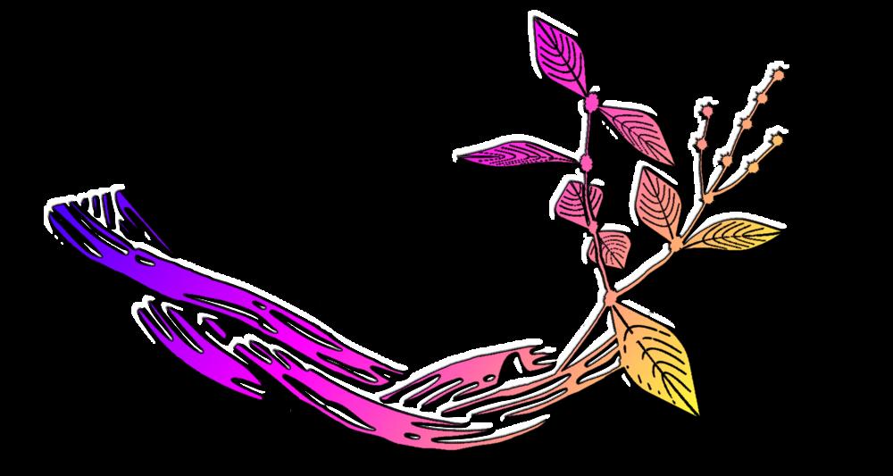 Ayahuasca - Banisteriopsis Caapi vine, Psychotria Viridis. Yage, Hoasca, Vegetal . .