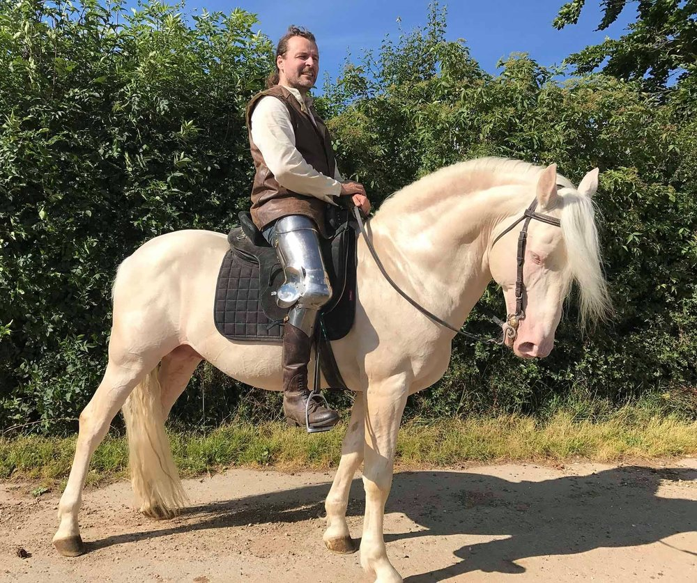 Ghost, a Lusitano stallion, is getting used to the weight and noise of armor, one piece of equipment at a time.
