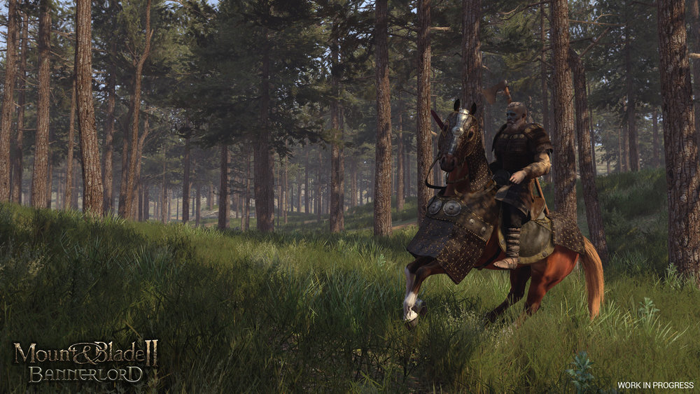 I bless the reins down in Calradia….