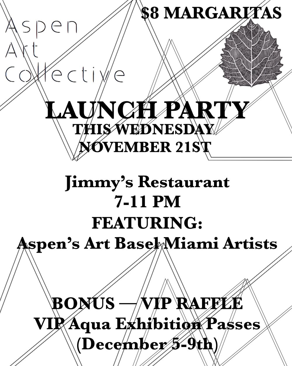AAC Launch Flyer