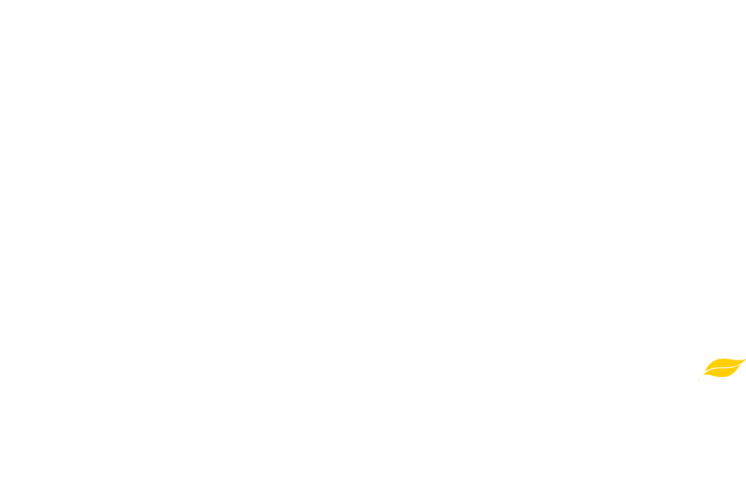 Yellowleaf Creek Mill