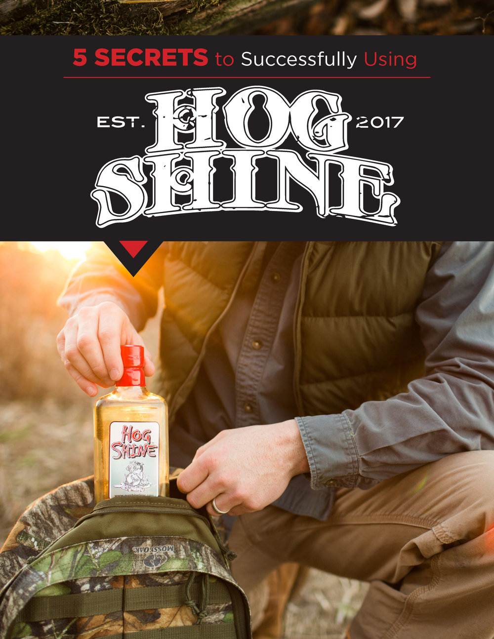 Hog Shine PDF - 2018_Page_1.jpg