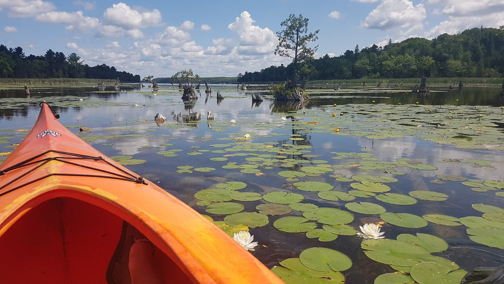 Kayaking in the Kwarthas