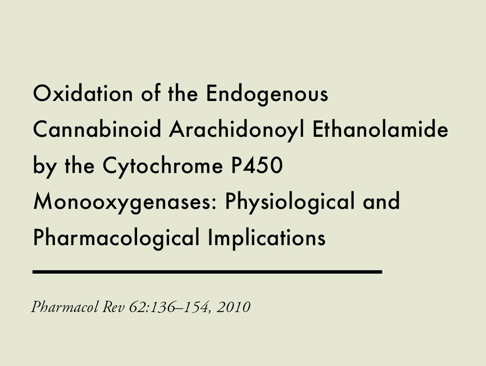 0005_Oxidation of the Endogenous Cannabinoid_Arachidonoyl Ethanolamide by the Cytochrome P450_Monooxygenases_ Physiologi.jpg