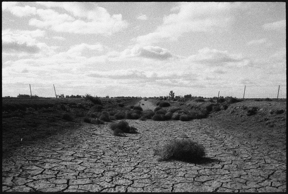 4-Hay-Griffith-18_114.jpg