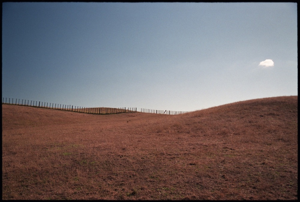 Hawkes Bay '18_058.jpg