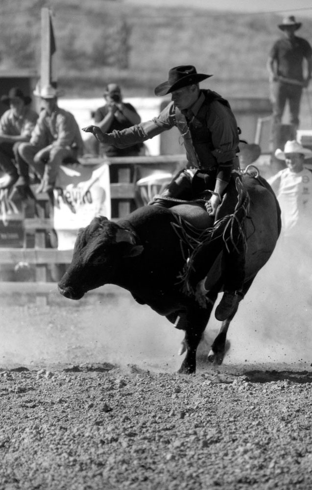 Hawkes Bay Rodeo_002.jpg