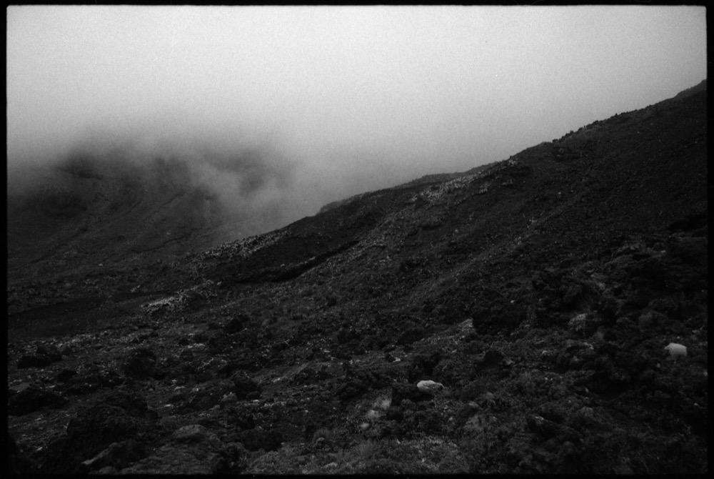 North Island_114.jpg