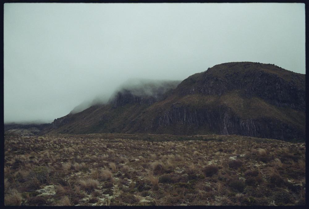 North Island_133.jpg
