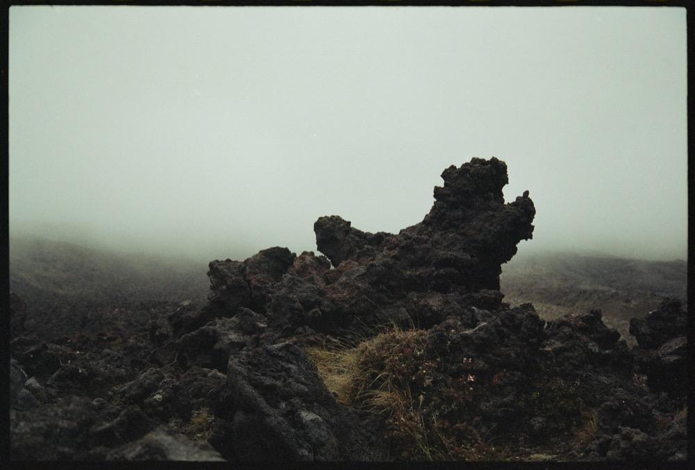North Island_141.jpg
