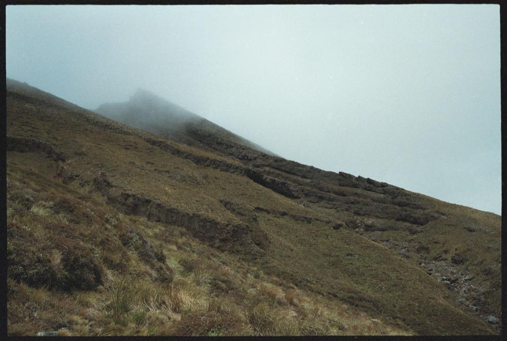 North Island_155.jpg
