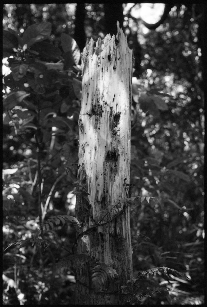Kapati Island_015.jpg