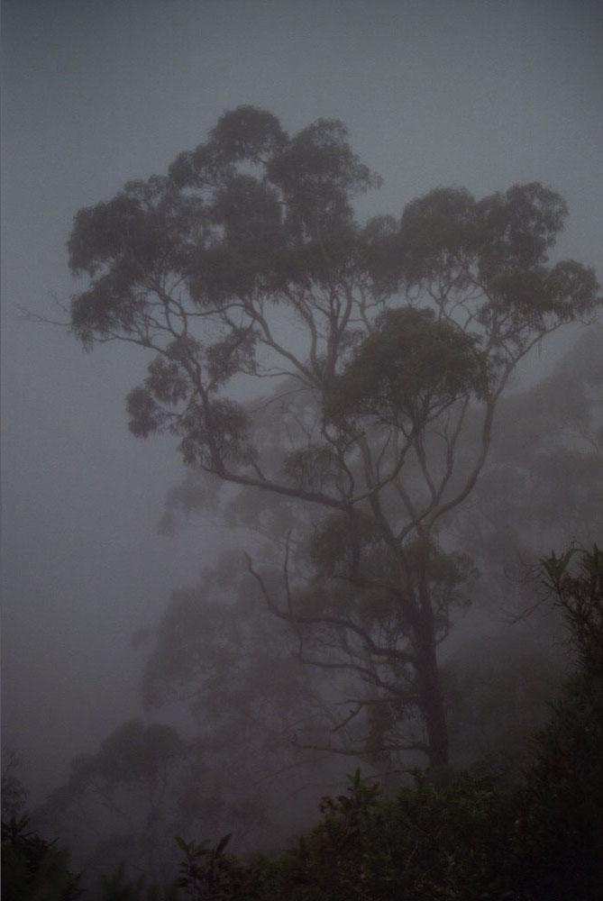 NSW Roadtrip_027.jpg