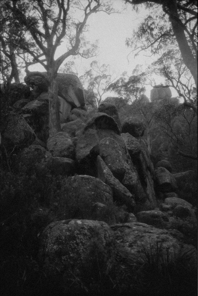 NSW Roadtrip_080.jpg