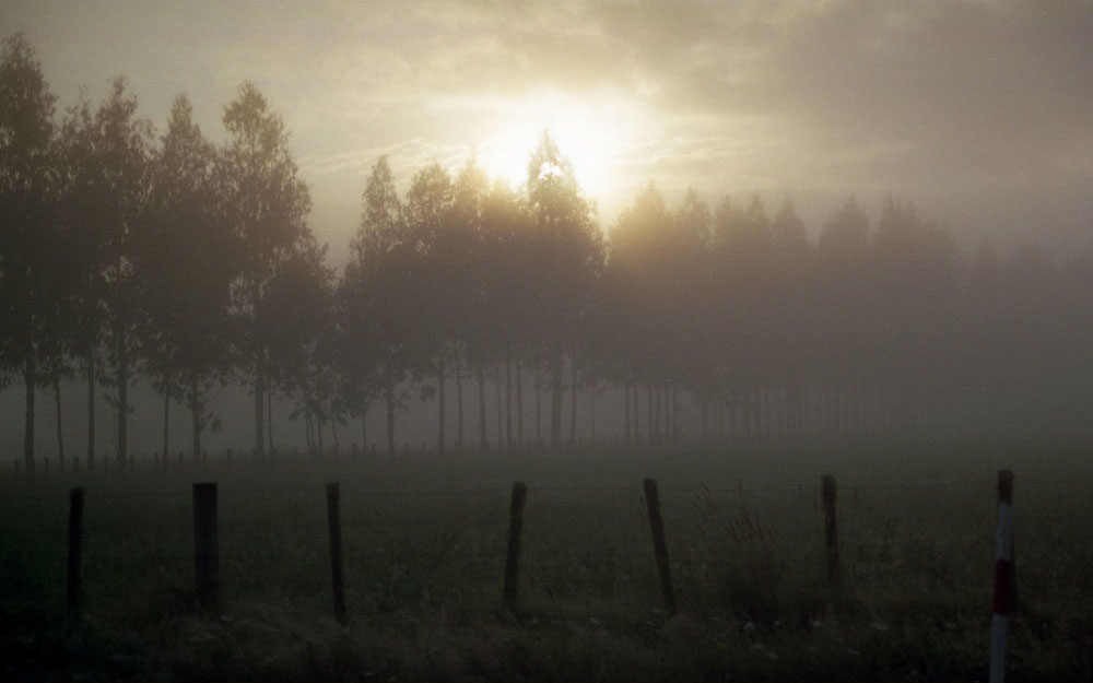 Taupo_053.jpg