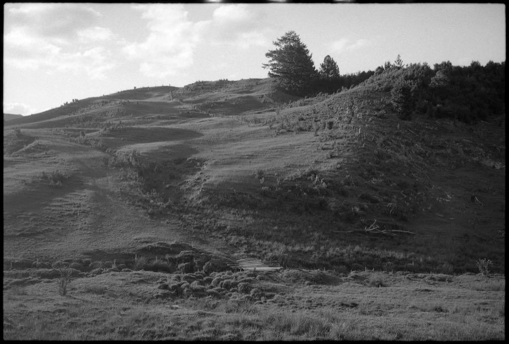 North Island '17_030.jpg