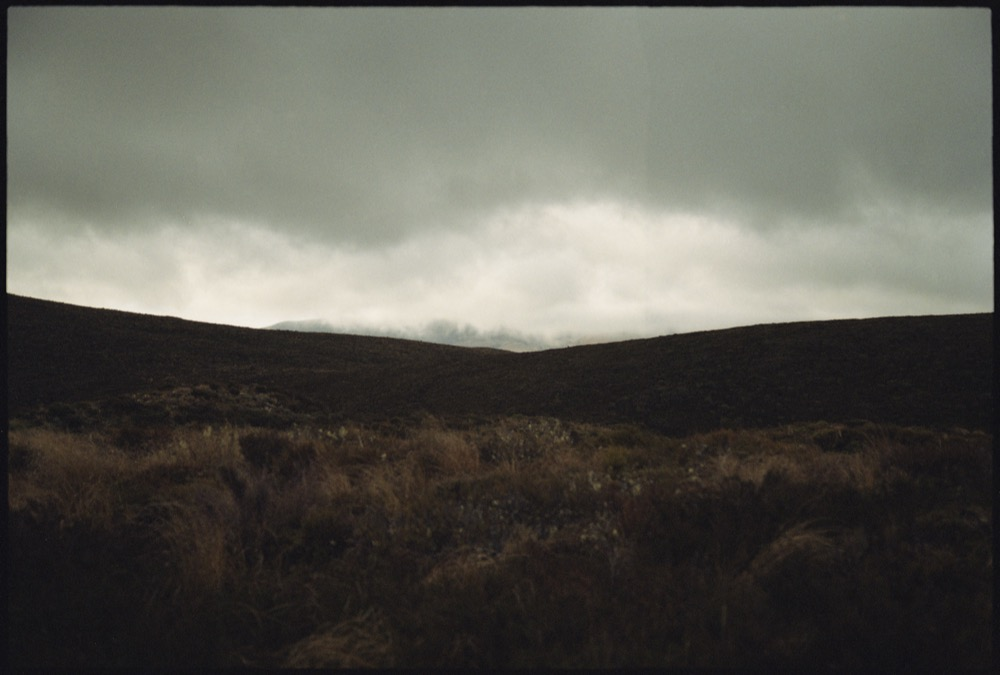 North Island '17_086.jpg