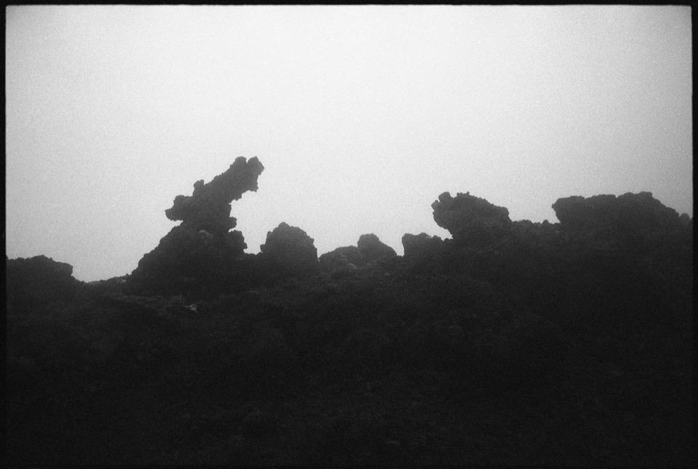 North Island '17_114.jpg