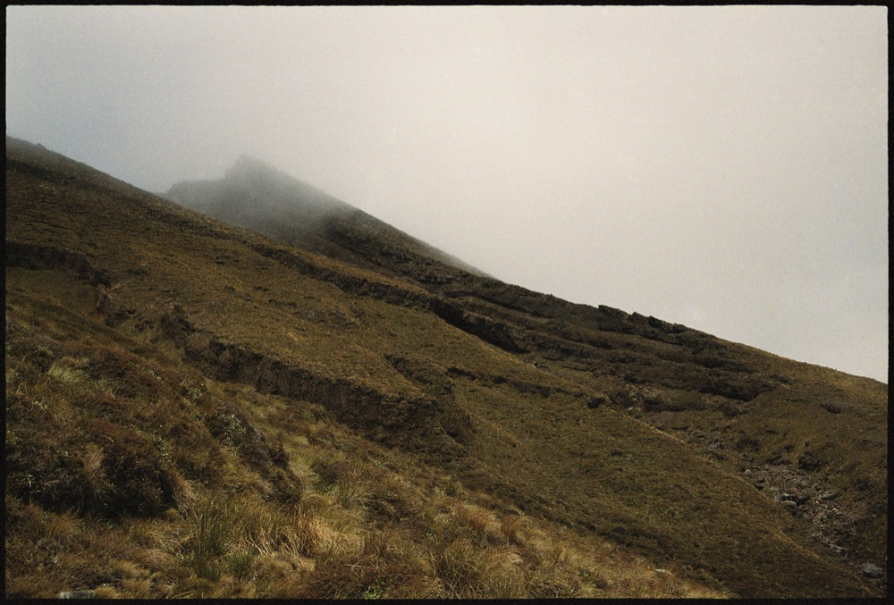 North Island '17_129.jpg