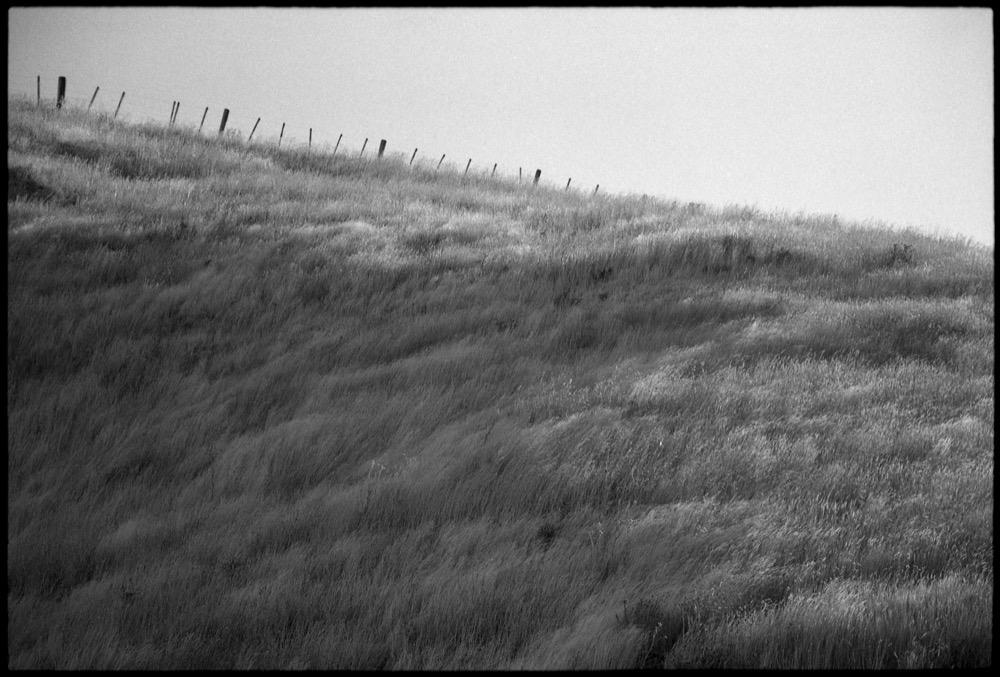 North Island '17_197.jpg