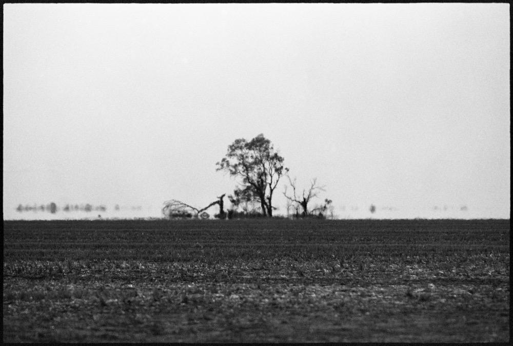 NSW-QLD '18_193.jpg
