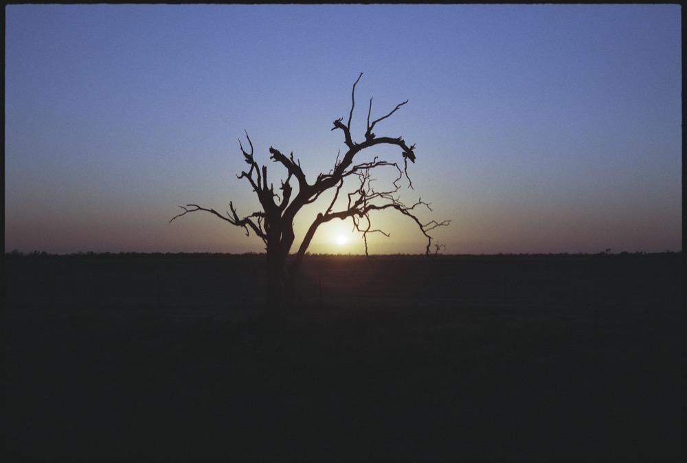 NSW-QLD '18_113.jpg