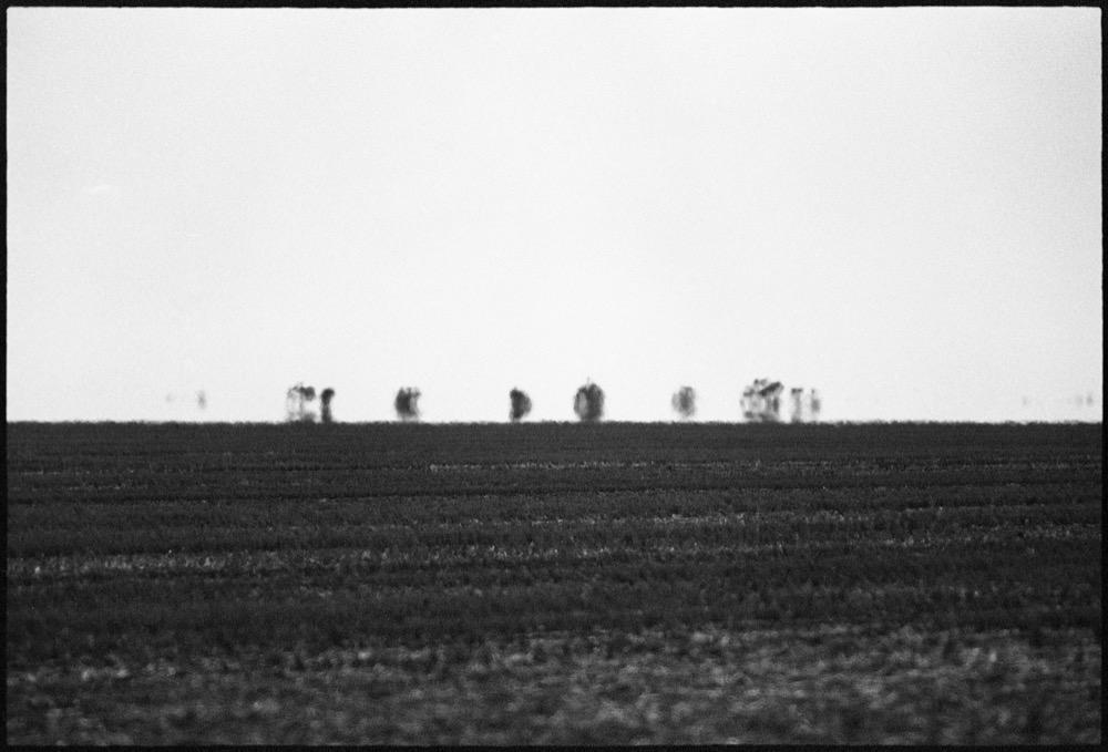 NSW-QLD '18_190.jpg