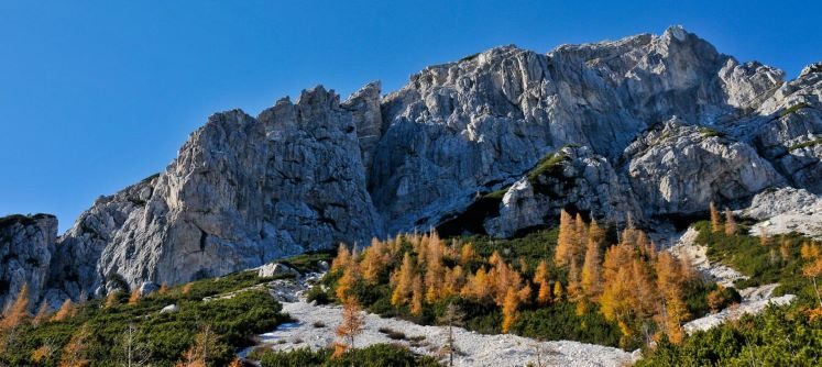 Triglav National Park.jpg