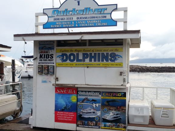 The marina in Lahaina is a good spot to book a boat tour.