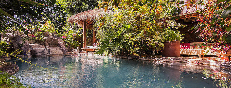 Garden at Manoa Valley Inn