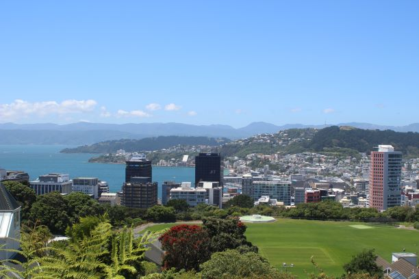 The view of Wellington from the cable car stop at the top of the hill