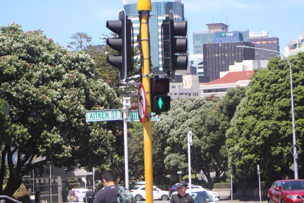 Silhouette of Kate Sheppard illuminated on a crosswalk signal in Wellington