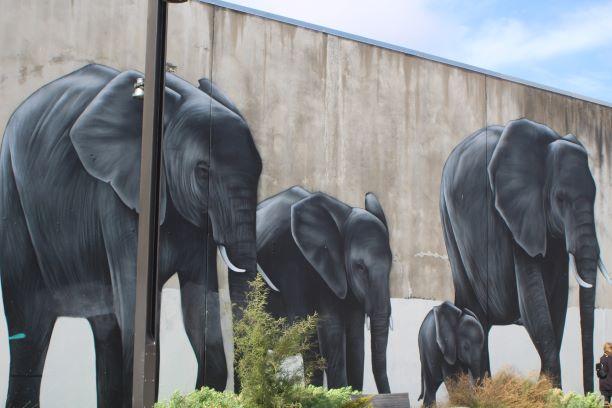 Christchurch street art 4.JPG