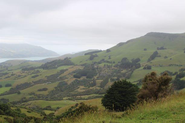 Christchurch Banks Peninsula 3.JPG