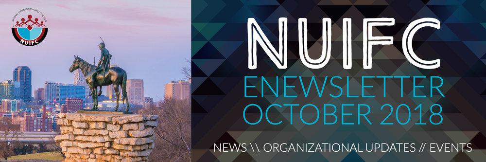 NUIF eNewsletter.jpg