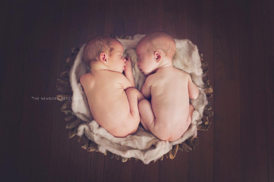 Newman_Twins_Newborn-22_BJPWEB