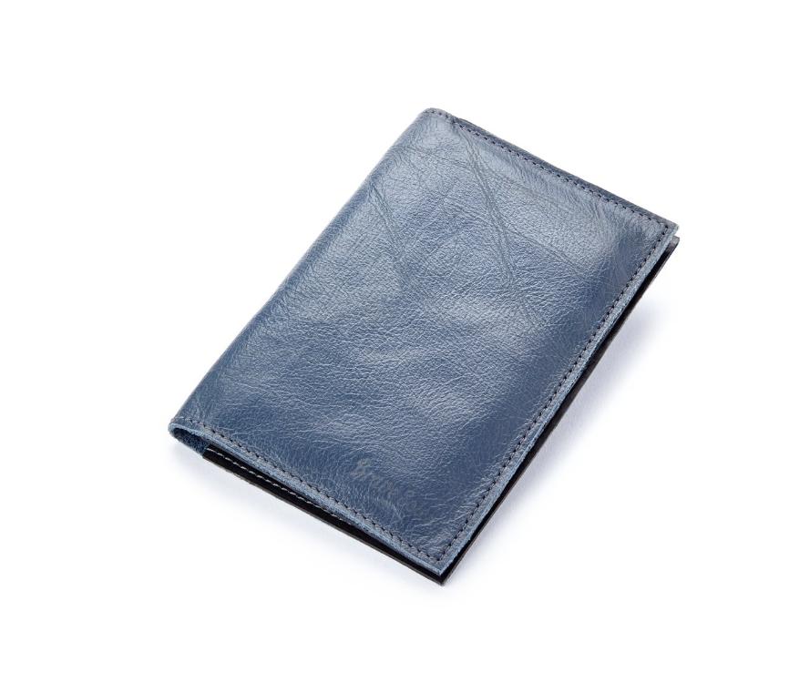 The Pearson Atlantic Blue Passport Holder