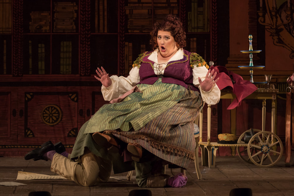 Berta in  Il barbiere di Siviglia  - Photo: Scott Suchman