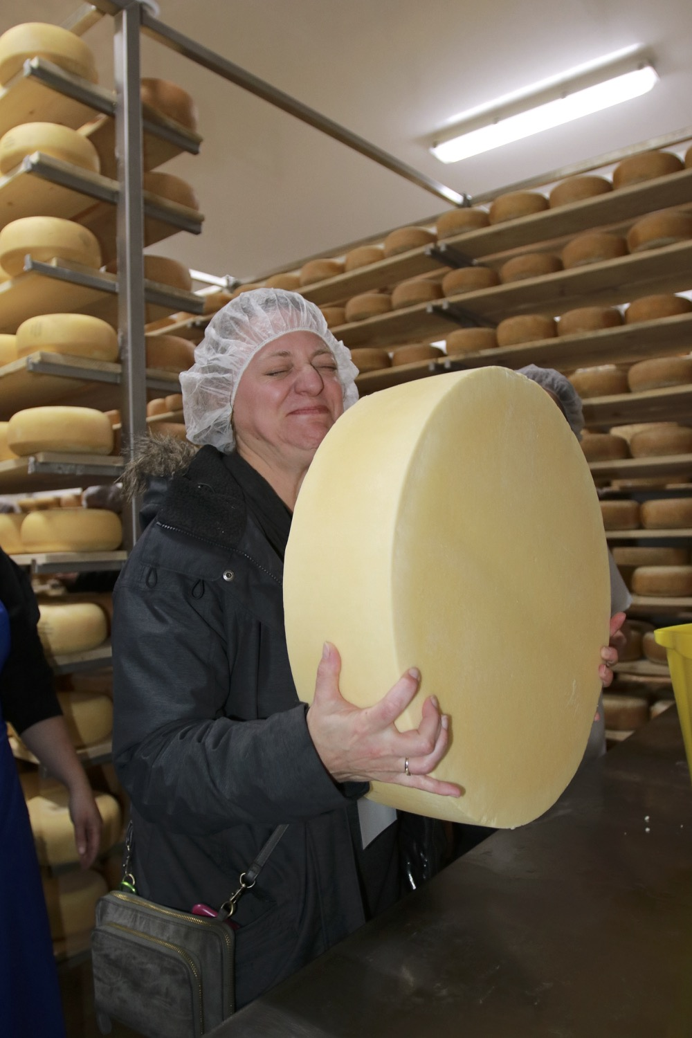 Hefting a wheel of cheese in the aging room is a full-on sensory experience.