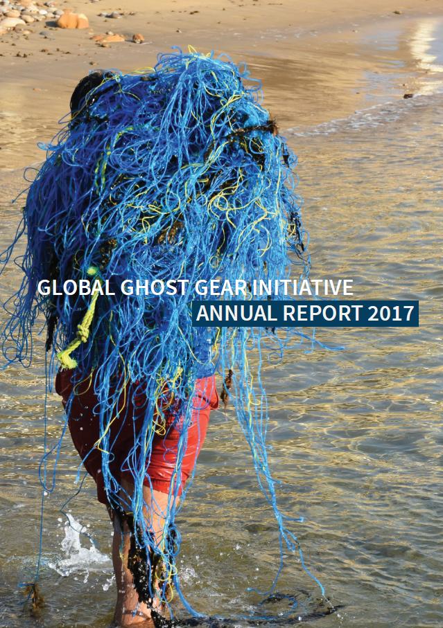 GGGI Annual Report 2017