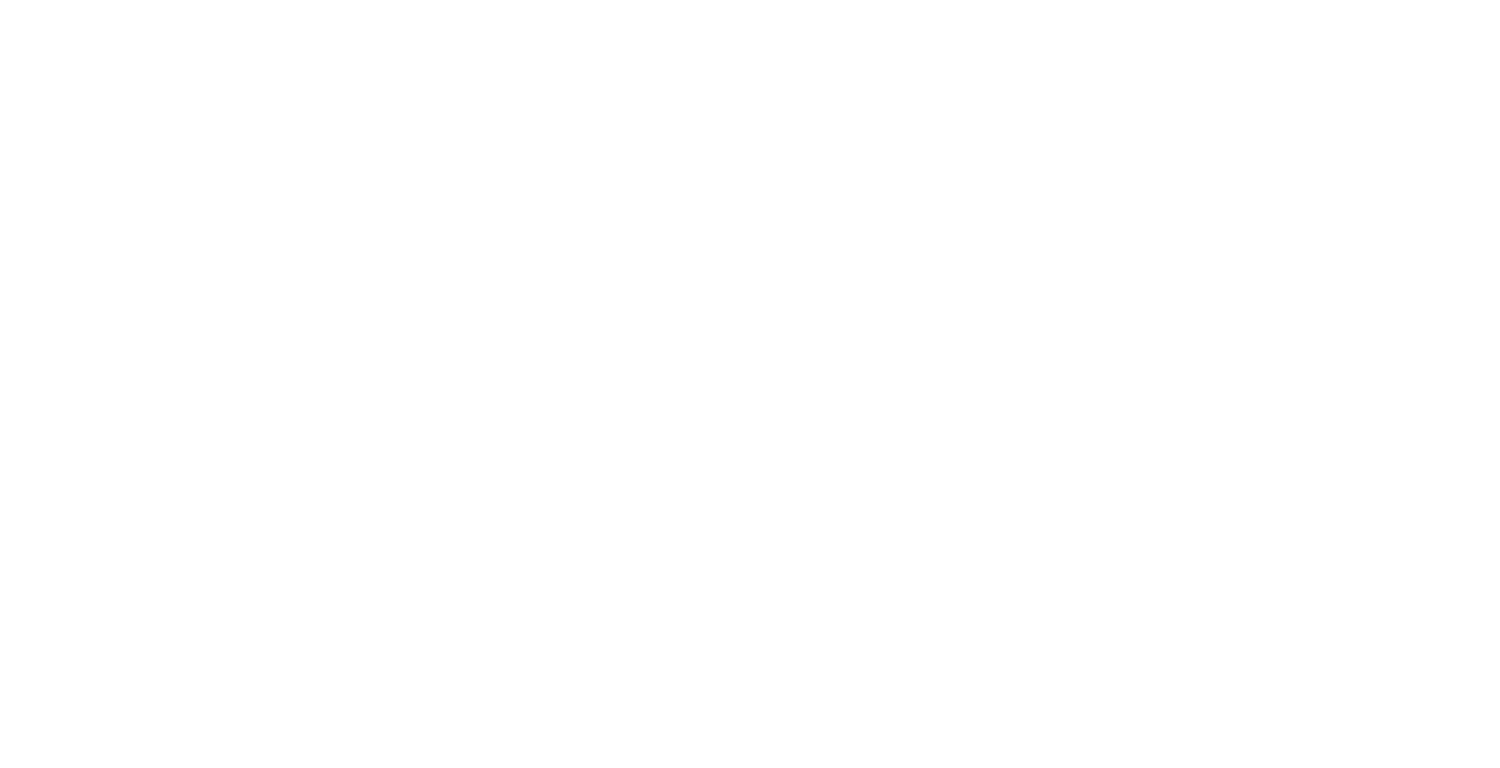 Wild Pizza Co.