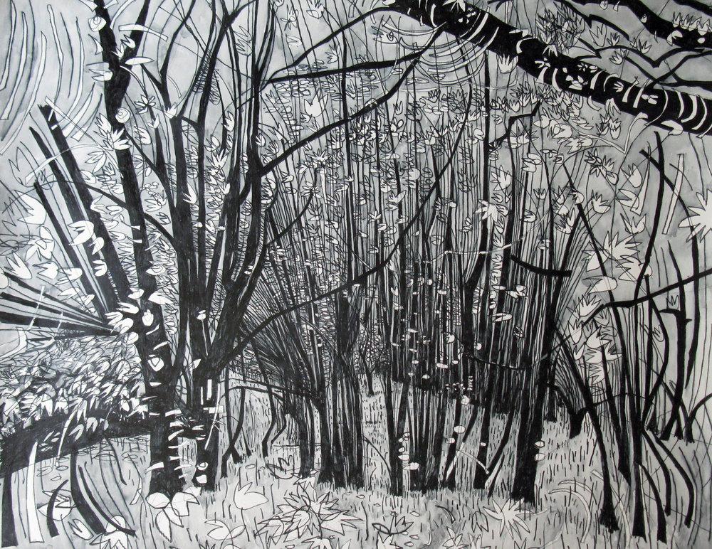 Veil of Trees