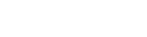 The Bridge Therapeutic Services