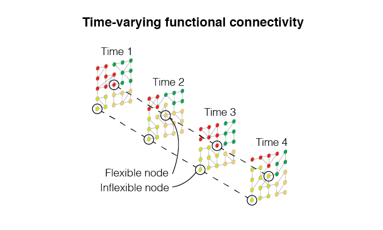 The correlation structure of brain activity fluctuates over short timescales. We use multi-layer network models and time series analysis to investigate the origins of these fluctuations and to assess their relationship with cognitive and psychological processes.